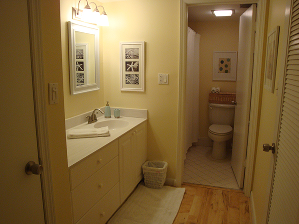 Master Bath And Dressing